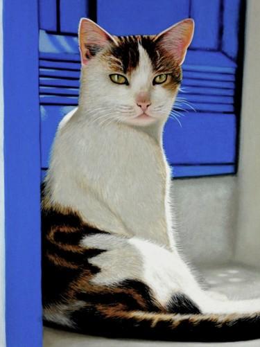 Un chat à Mykonos