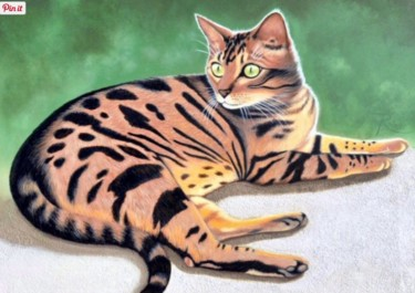 Le tigré